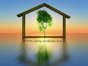 nettoyage énergétique lieu domicile maison, jan et Olivia medium spirit